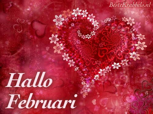Hallo Februari