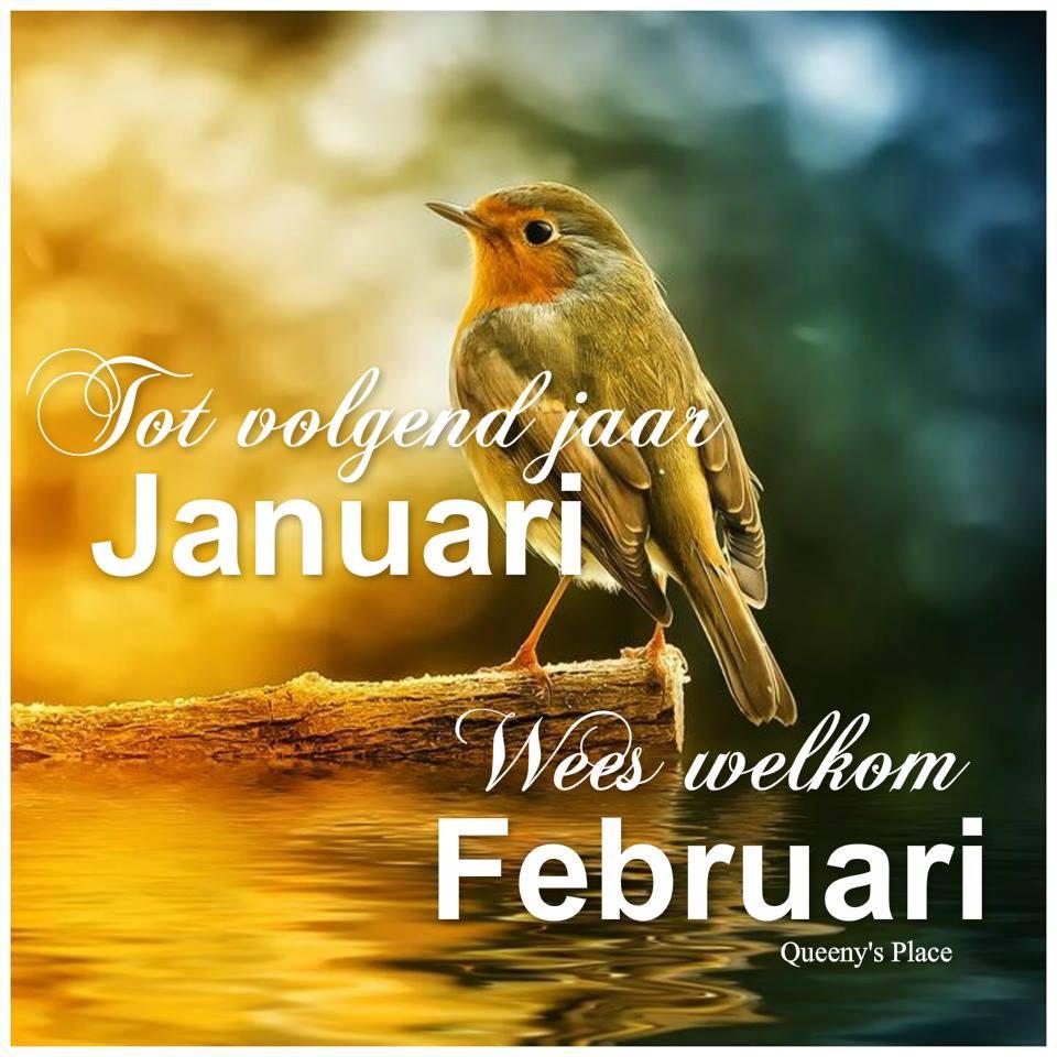 Tot volgend jaar Januari Wees...