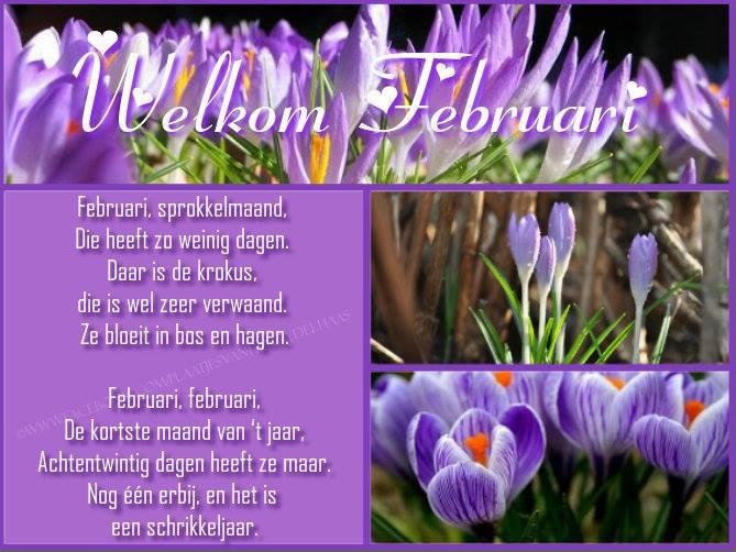 Welkom Februari Februari...