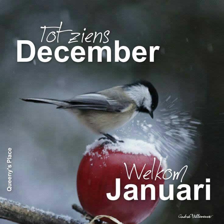 Tot ziens December Welkom Januari
