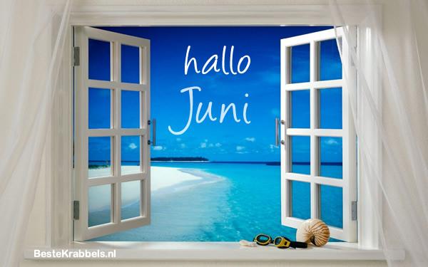 Hallo Juni