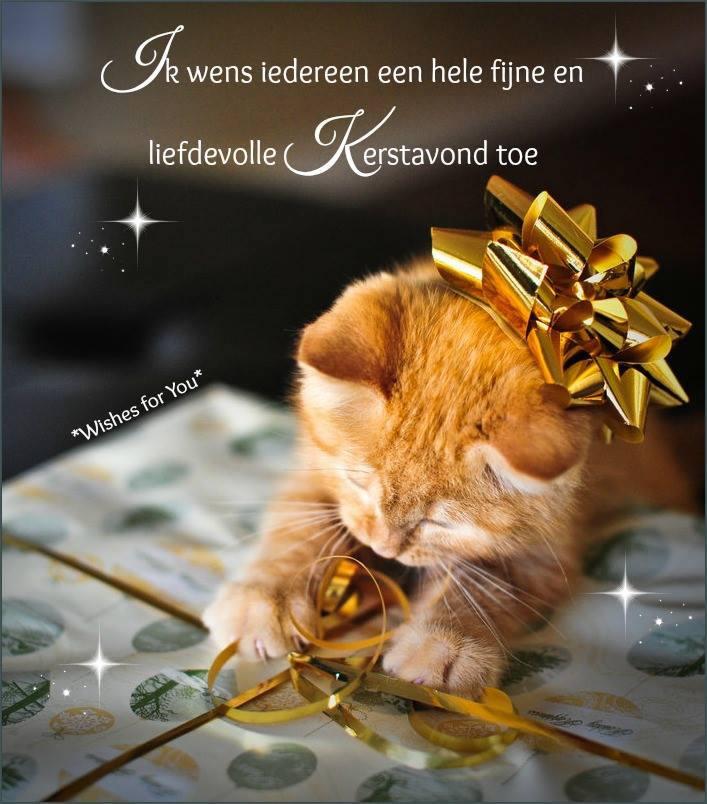 Ik wens iedereen een hele fijne en liefdevolle Kerstavond toe