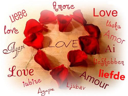 Amore love laska amor ai...