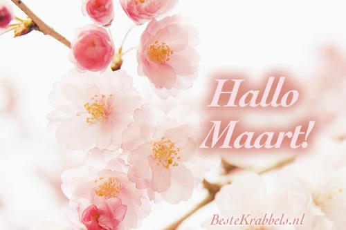 Hallo Maart!