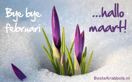 Bye bye februari ...hallo maart!