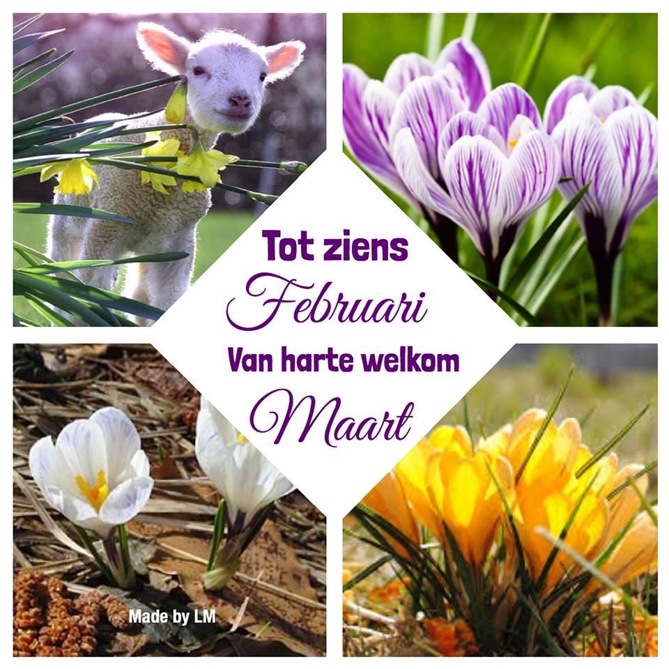 Tot ziens Februari Van harte welkom Maart