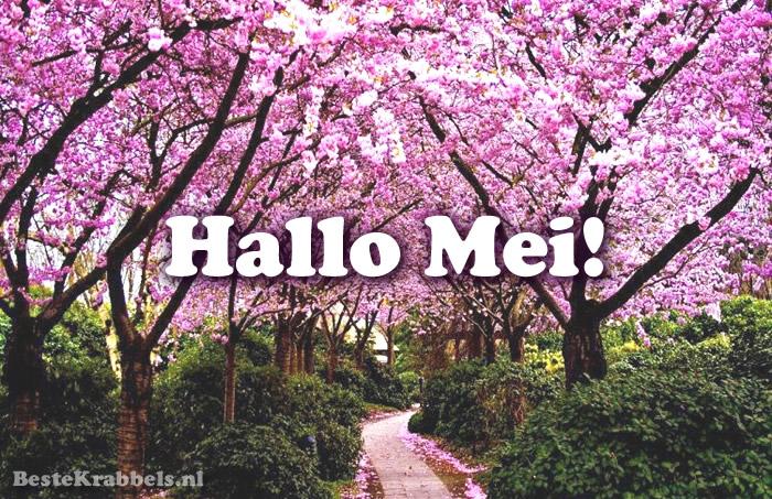 Hallo Mei!