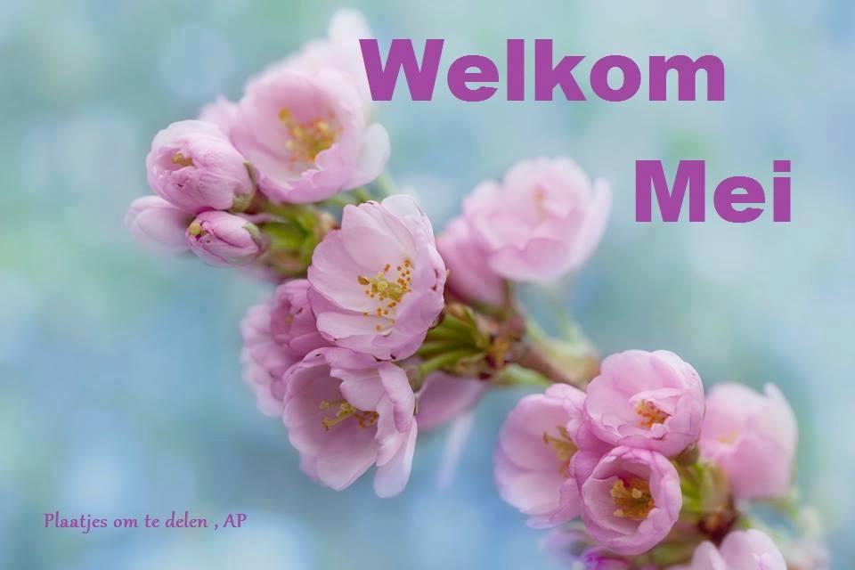 Welkom Mei