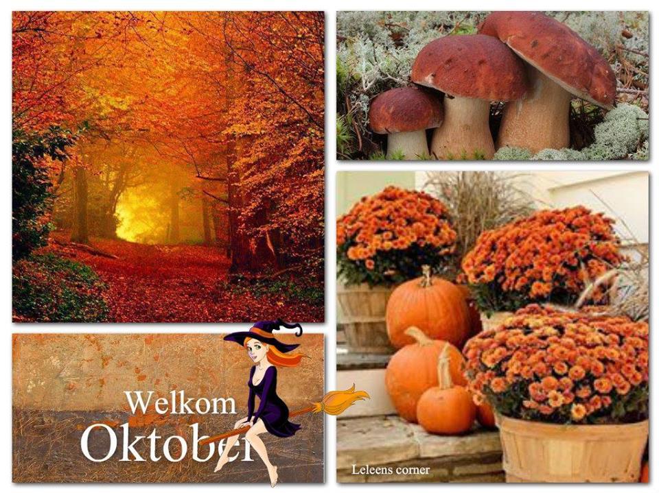 Welkom Oktober