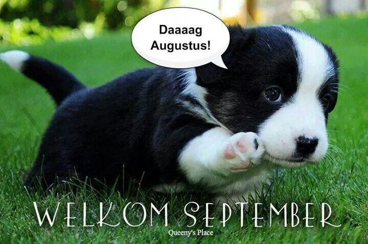 Daaaag Augustus! Welkom September