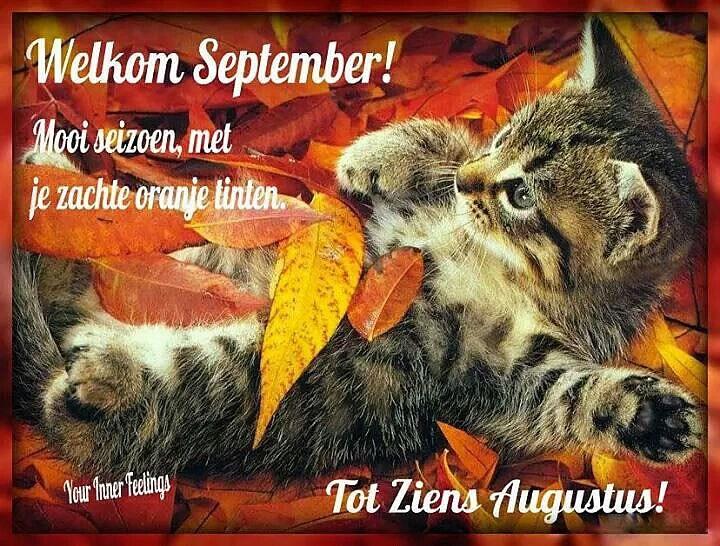 Welkom September! Mooi seizoen, met je zachte oranje tinten. Tot ziens Augustus!