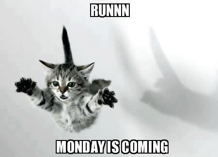 Runnn Monday is coming